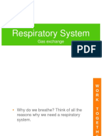 respiratory_system.ppt