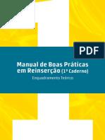 Manual_Reinsercao.pdf