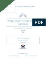 Procesamiento Lenguaje Natural.docx