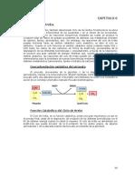 8- Cap 6 - Ciclo de Krebs y Ciclo Del Glioxilato