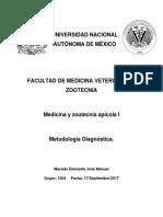 MEJMT1_A1_1004.docx
