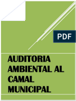 314370497-AUDITORIA-AMBIENTAL.docx