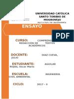 257120775-Ensayo-Puentes.doc
