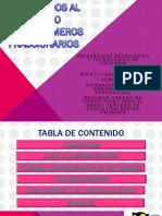 iniciacinenlosfraccionarios-1.pptx