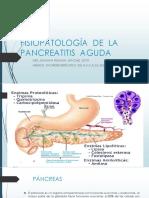Fisiopatologia de La Pancreatitis Aguda / Universidad Catolica de Santa María - Arequipa