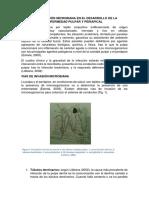 Participación Microbiana en El Desarrollo de La Enfermedad Pulpar y Periapical