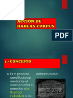 habeas-corpus-oficial.-.pptx