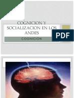 cognición.pptx