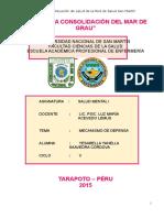 Análisis de Situación de Salud de La Red de Salud San Martin 2012