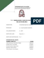 REPORTE_DEL_TRABAJO_CULTIVO_MAIZ_2[1]