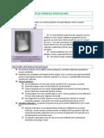 1.6b.pdf