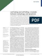 Crosstalk Between Autophagy Apoptosis