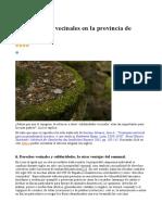 Solidaridades Vecinales en La Provincia de León