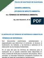 8.2. Conf EIA TdeR