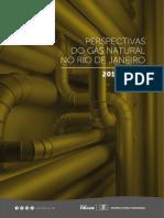 Perspectivas do Gás Natural no Rio de Janeiro
