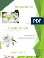 A Constituição da Flor.pptx
