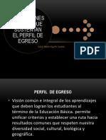 perfil de egreso definiciones clave.pptx