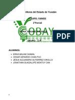 Actividadtransversal1- Equipo Yankee (1)