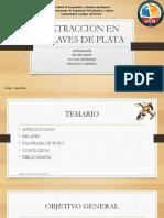 Proyecto Argentum de Rial