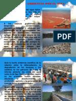 Crisis Ambientales en Brasil