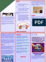 TRIPTICO CONTIYUCION 23-10.17.docx