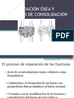 Consolidación Ósea y Defectos de Consolidación