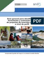 Guía general para identificación para formular PIP.pdf