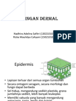 Jaringan_Dermal_Belum_Fix[1].pptx