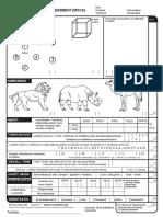 MOCA-Test-Finnish_2009.pdf