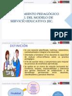 acompañamiento pedagogico JEC