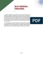 pueblos indigenas.pdf