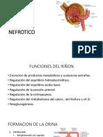 01 sindrome nefrotico