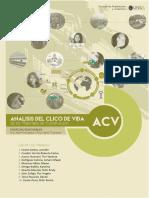 Documento Acv