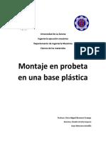 Montaje en Probeta en Una Base Plástica
