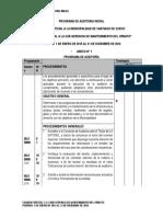 Programa de Auditoria Inicial