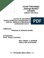 Crupa Levente.doc