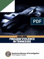 Firearm Report 2013 2016 Final