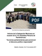 Informe 14a Asamblea Plenaria
