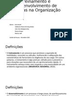 Treinamento e Desenvolvimento GPS