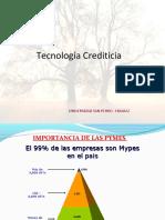 tecnologiacrediticia2011-130621120223-phpapp01