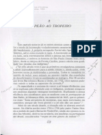 Do Peão Ao Tropeiro. Caminhos e Fronteiras. Hollanda, Sérgio b. de. 1994.