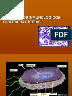 inmunidad componentes