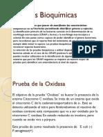 pruebas20bioquimicas12.pptx