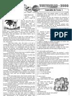 Português - Pré-Vestibular Impacto - Análise de Conteúdo - Texto 14