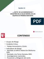PPT (3).pdf