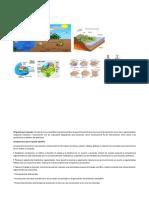 Plan de Área Ciencias Naturales