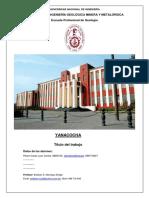 Yanacocha Resumen Produccion Formato