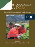 Guia Metodologica de ECAs