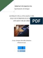 Cuña Salina y Nutrientes Río Ebro