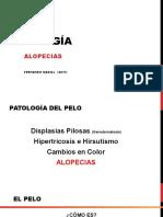 Clase Pelo Alopecia 2017